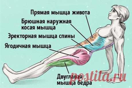 Простые упражнения чтобы убрать жир на животе и выровнять осанку.