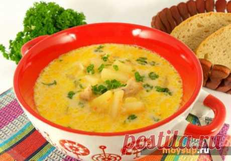 Уникальный рецепт пикантного куриного супа с сыром и черным рисом