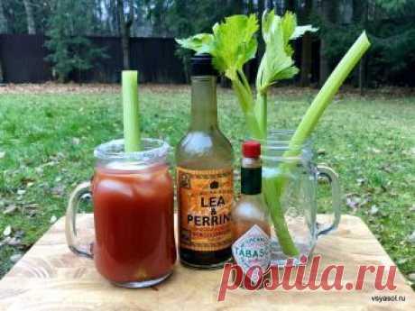 Новогодний коктейль: Bloody Mary «Лучший Bloody Mary в моей жизни я пила на следующий день после свадьбы». Эта фраза в британском журнале The Spectator привлекла мое внимание прежде, чем я обратила внимание на рецепт.…