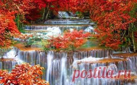 Осень… Поющая осень… То ветром поёт, То дождями… Шуршанием листьев нам шепчет Свои про печаль телеграммы… То воет, То стонет, То плачет… А как же иначе… То осень – природы чарующей просинь… То радость в ней… То расставанья… То встречи… То очарованья… То грусть… То печаль… То страданья… И всё же прекрасная осень! В ней счастье в любви яркой впрочем!.. …………… ТО ОСЕНЬ!..   © Copyright: Эдельвейс-Татьяна, 2017