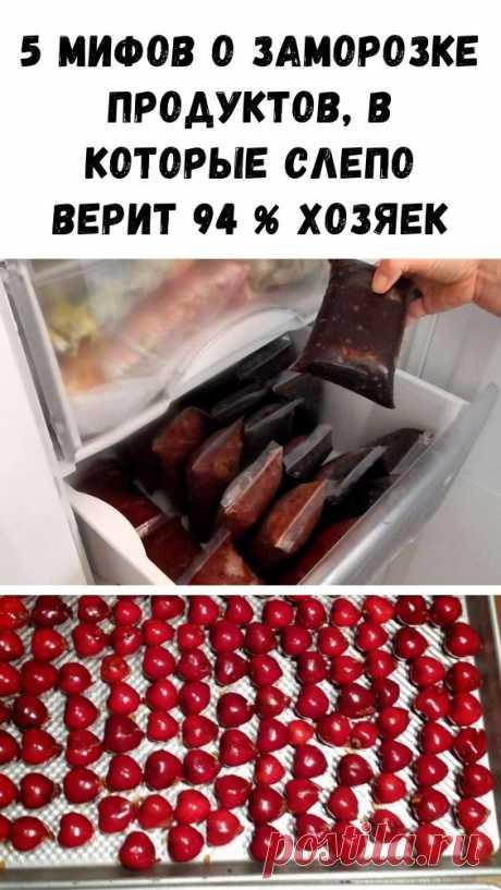 5 мифов о заморозке продуктов, в которые слепо верит 94 % хозяек - Интересный блог