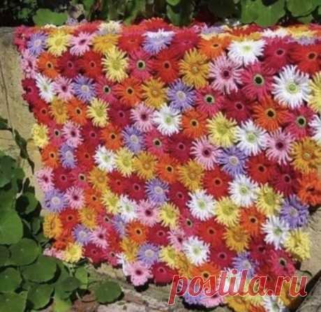 Цветочный плед - схема вязания
