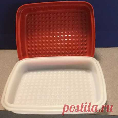 "Vintage Tupperware Marinade Shop 21g25's closet or find the perfect look from millions of stylists. Fast shipping and buyer protection. Red paprika. Waffle bottom. Measures 8 1/2"" x 6 1/2"" x 2"" deep. Minor wear."