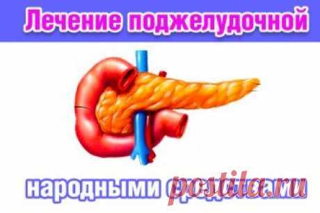 Лечение поджелудочной железы проверенными народными средствами. Причины заболевания | Полезные советы