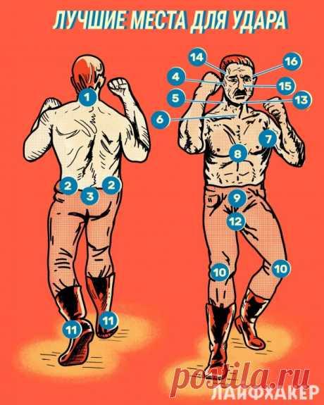 16 болевых точек, удары по которым сразят обидчика - Лайфхакер