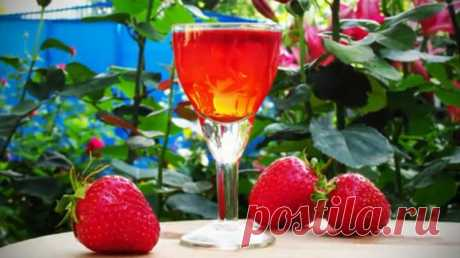 Recipe of tincture from strawberry \/ Simple recipes