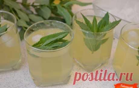 Освежающий лимонад / Видео-рецепты / TVCook: пошаговые рецепты с фото
