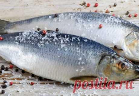 Как убрать лишнюю соль из рыбы? — Полезные советы