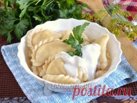 Вареники с адыгейским сыром — рецепт с фото пошагово