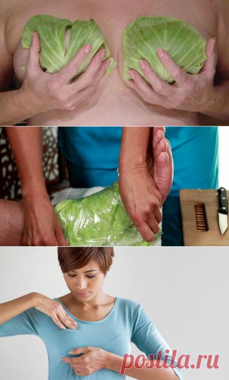 Если приложить к груди капустные листья на всю ночь - каким будет результат?