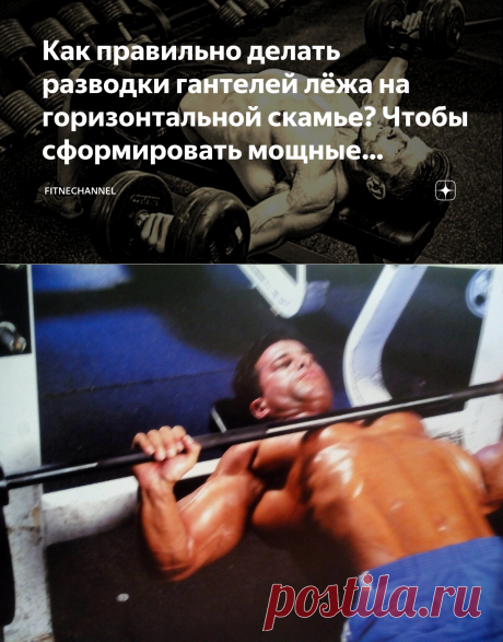 Как правильно делать разводки гантелей лёжа на горизонтальной скамье? Чтобы сформировать мощные грудные мышцы | fitnechannel | Яндекс Дзен