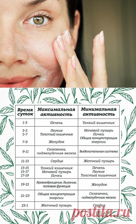 Биологические часы кожи и организма в целом: что нужно знать