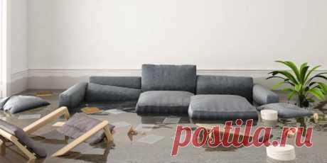 (+2) Что делать, если вас затопили : Полезные советы : Дом : Subscribe.Ru