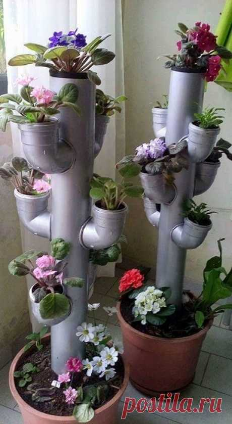 The original decision to equip an interior with unusual pots for flowers.