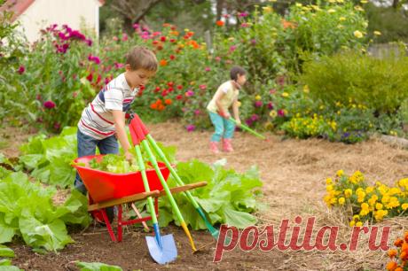 Декоративный мини-огород для детей