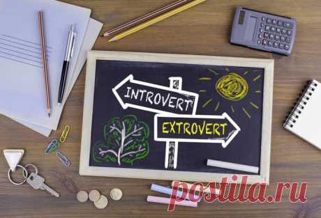 Если ребенок - интроверт: 10 правил, которые должны помнить родители