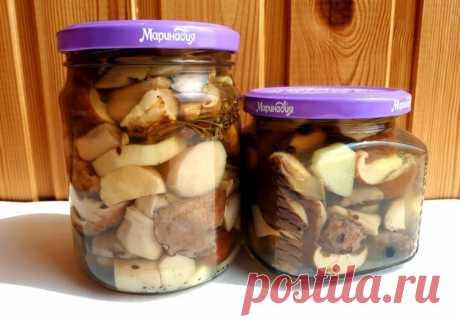 Маринованные грибы на зиму - пошаговый рецепт с фото.