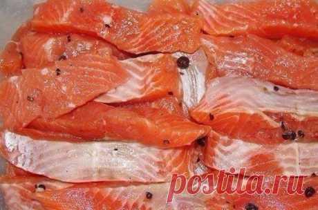 """Солёная, маринованная, копчёная рыбка легко! Самые вкусные рецепты!  1. СКУМБРИЯ ЗА ТРИ МИНУТЫ! ▬▬▬▬▬▬▬▬▬▬▬▬▬▬▬▬▬▬▬▬▬▬▬▬▬▬▬▬ """" Этот рецепт маме рассказала продавщица рыбы на рынке. Он настолько элементарный, что я поразилась такому отличному результату. Конечно это а-ля копченая скумбрия , так как копчением в рецепте и не пахнет, но вкус у рыбки великолепный.  Ингредиенты: Скумбрия (средняя) — 1 шт Луковая шелуха (сколько есть, на глаз) Соль (ложки без верха) — 5 ст.л. Вод..."""