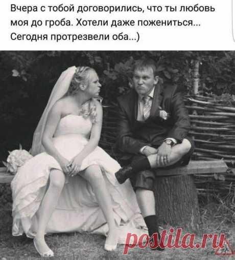 Пассажиры поезда Москва-Киев поняли, что что-то пошло не так, когда по вагону с напряжённым лицом прошёл Стивен Сигал - РЖАКА - медиаплатформа МирТесен РФ ответила на санкции США и повысила пенсионный возраст до 65 лет для мужчин и 63 лет для женщин, а последним ударом было введение 20% НДС. - Дорогой, если я умру, обязательно женись. Хочу, чтобы и после моей смерти ты был счастлив.- Что ты, дорогая. Я и так буду счастлив. - А как по дереву