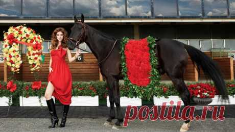 Girls_Girl_in_a_red_dress_with_a_black_horse_099248_25.jpg (1600×900)