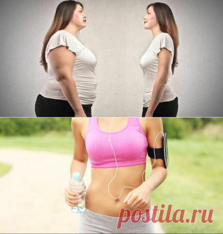 5cac08748657 Как не толстеть с возрастом  советы мужчинам и женщинам, для поддержания  тела в тонусе