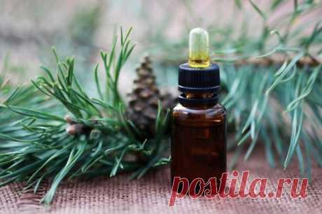 Целительная сила недорого пихтового масла для красоты и здоровья