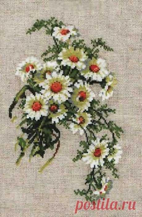 Вышивка ромашки схемы. Бесплатные цветные схемы вышивки крестом   Домоводство для всей семьи.