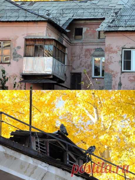 """""""Мы с Потока"""": путешествие по городским окраинам Барнаула :: ИА АМИТЕЛ"""