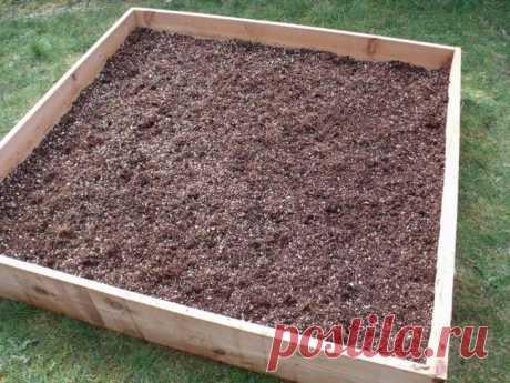 ¿Vermikulit para las plantas – como aplicar en la economía de campo?