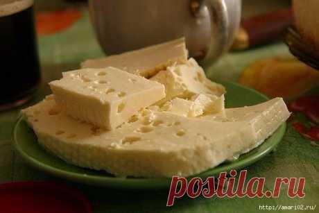 Домашний сыр быстрого приготовления.