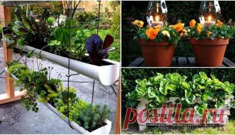 Идеи, которые помогут увеличить возможности маленького сада Для многих дачный участок - это настоящая отдушина. Ведь он приносит пользу и для тела, и для души. Чем ярче и красивее участок, тем приятнее хозяевам там находиться. Сегодня мы собрали 17 идей, котор...