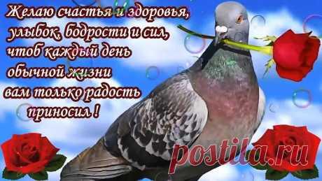 """""""ПОЖЕЛАНИЯ ДРУЗЬЯМ""""(музыкальное видео с пожеланиями)"""