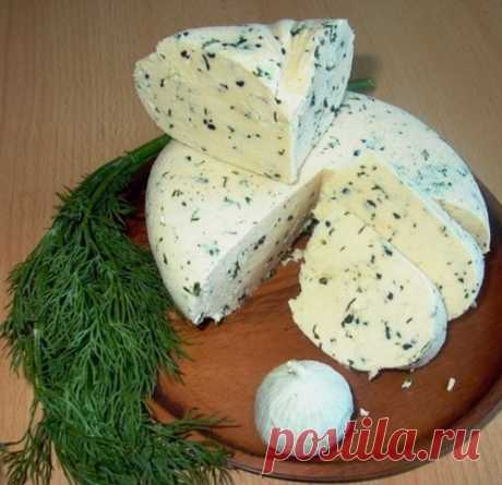 """THE REMARKABLE RECIPE OF COTTAGE CHEESE, AND VERY FAST AND IN GENERAL \""""WITHOUT TROUBLES\"""""""
