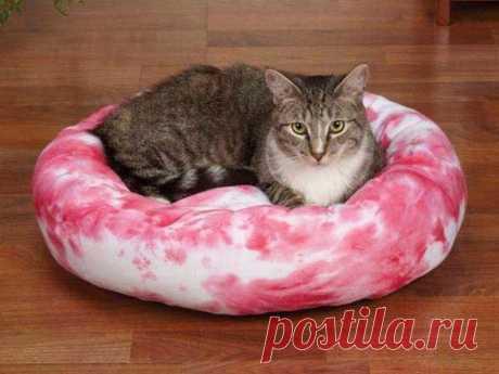 Делаем лежанки для кошек своими руками Делаем лежанки для кошек своими руками Если вы – счастливый хозяин милой кошечки, но вам не очень нравится спать с кошкой на голове, значит, вас мучает вопрос о том, что с этим делать? Выход проще, че...