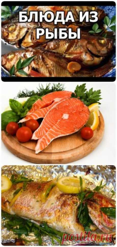Любите рыбку? ТОП-25 рецептов на праздничный стол и на каждый день.
