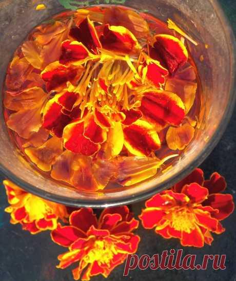 Лютеиновая настойка для зрения. Не незабудка мой любимый цветок. Бархатцы цветок прозрения | Быстрые рецепты Живое питание | Яндекс Дзен