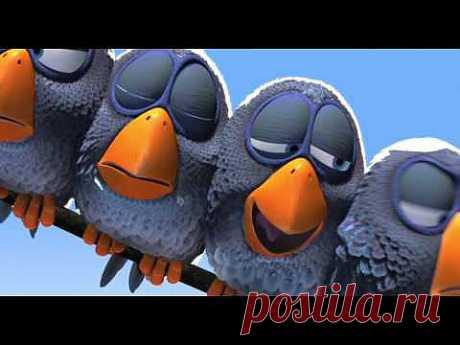 Птички на проводе - YouTube