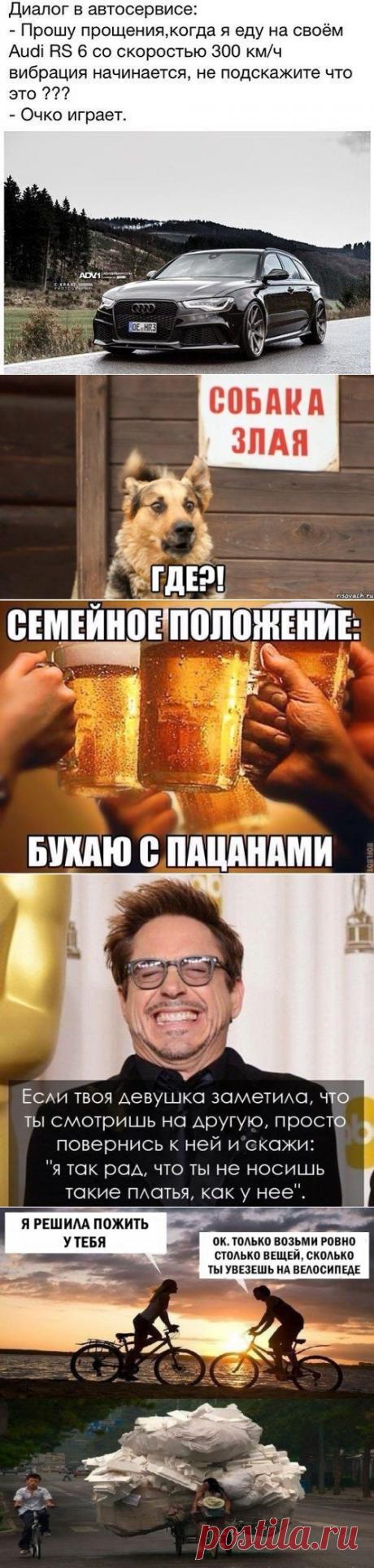 Весёлые картинки из соцсетей / Приколы