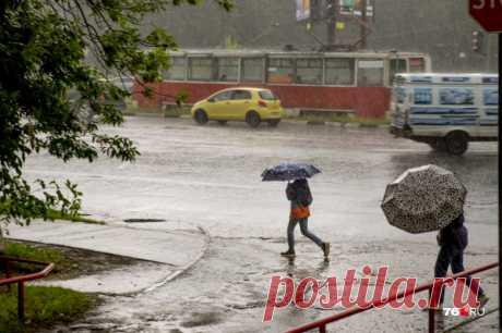 Прогноз погоды на июль и август в Ярославле: когда закончатся дожди | Погода в ЦФО, погода в Ярославле | 76.ru - новости Ярославля