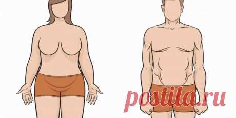 Тип вашего телосложения действительно определяет, как быстро вы теряете вес! Я бы никогда не подумала об этом! - Стильные советы