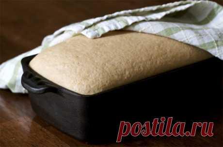 7 рецептов домашнего хлеба     На то, что в магазине сложно найти хороший хлеб, не пожаловался только ленивый. Магазинные хлебобулочные изделия в большинстве своем не отличаются характерным вкусом и ароматом хлеба, к тому же он…