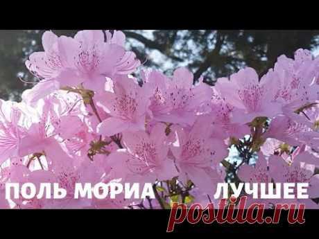 Оркестр Поля Мориа (Paul Mauriat). Весеннее настроение. Сборник Лучших Мелодий.