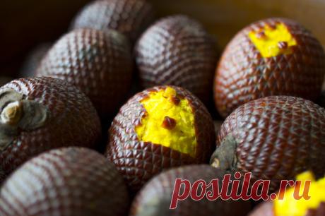 16 редких экзотических фруктов, которые вы увидите в первый раз
