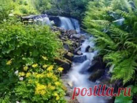 Сегодня 15 мая памятная дата Единые дни действий в защиту малых рек и водоемов