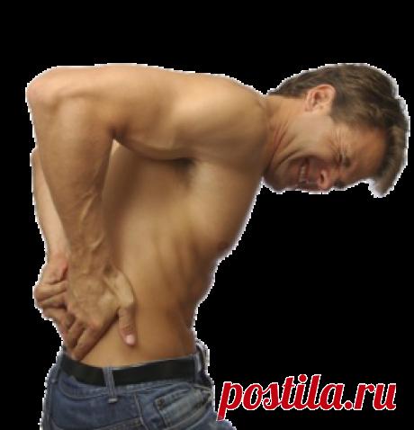 Упражнения для снятия острых болей в спине | Выживи сам