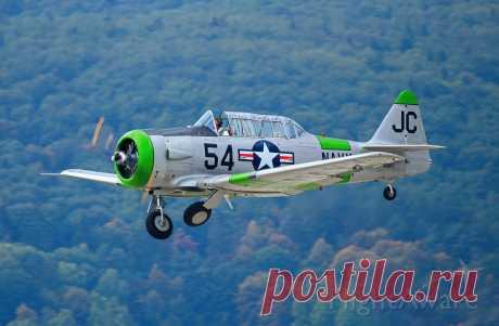 Фото FLY SYNTHESIS Texan (N3665F) - FlightAware