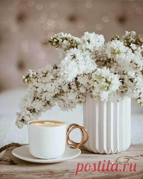 Утром самое время подумать о хорошем, поднять себе настроение и улыбнуться новому дню.  Instagram atenaopiela