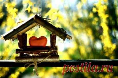 3 совета фэн-шуй, как привлечь любовь в ваш дом.
