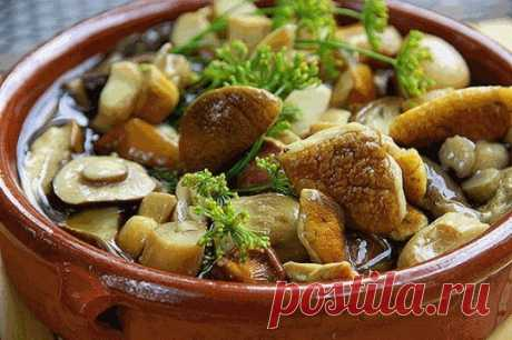 Простой маринад для консервации любых грибов (опят, маслят, белых и т.д.) Попробуйте простой, но очень вкусный рецепт маринада для грибочков! Ингредиенты: 1. Вода — 1 литр 2. Сахар — 2 ст. ложки 3. Соль — 4 ч. ложки 4. Лавровый лист — 3 шт. 5. Душистый перец — 6 горошин 6. Гвоздика — 4 шт. 7. Корица — 3 кусочка (молотой — ½ ч. ложки) 8. […]