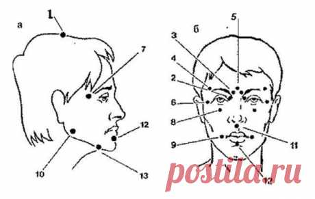 Массаж шиацу. Биологически активные точки на голове и лице (+ видео)